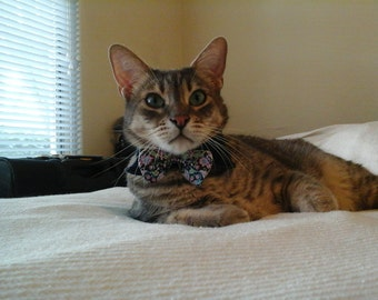 Strawberry Thief cat bowtie