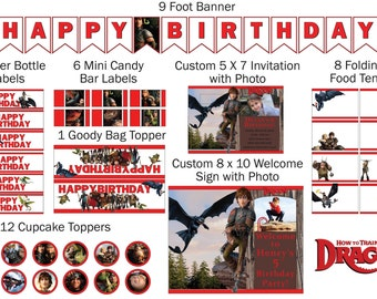 how to train your dragon birthday party decorations