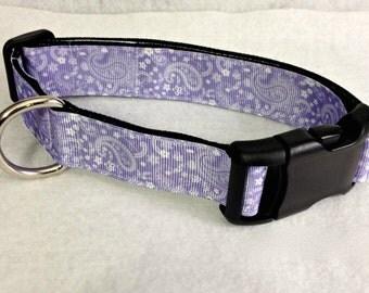Purple Paisley Dog Collar
