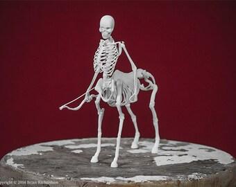 Centaur Skeleton 3D Print