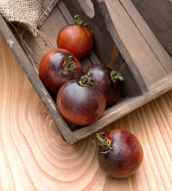 indigo rose heirloom tomato premium seed packet. Black Bedroom Furniture Sets. Home Design Ideas