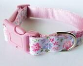 Pink Flower Girl Dog Collar - Adjustable Girl, Floral, Pretty Blue