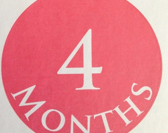 Pink ~ Monthly Baby Stickers Girls Monthly Milestone Stickers Monthly Bodysuit Stickers Baby Month Stickers Monthly Stickers Baby Gift