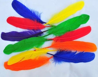 Colorful Packed Goose Feathers/Turkey Flat Feathers/Biots/Marabou/Guinea Plumage Fethers