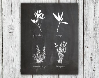 Chalkboard Herbs Illustration Art Print, Parsley Sage Rosemary and Thyme art print, home decor