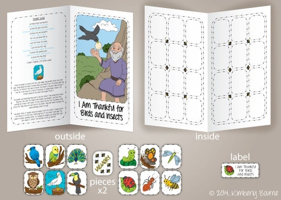 I Am Thankful for Birds and Insects File Folder Game and