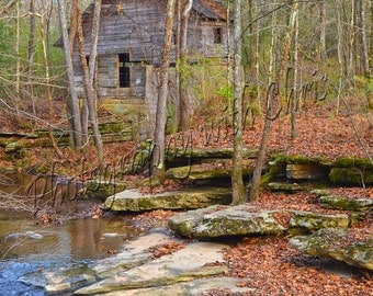 Winter's Brook