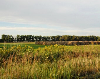 Print of Hay Bales in a Fall Field.  Fine Art Photography and Home Decor, Scenic Landscape