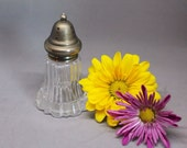 VINTAGE Salt Shaker. Spice Shaker. Tiny Vase. Vintage Glass.