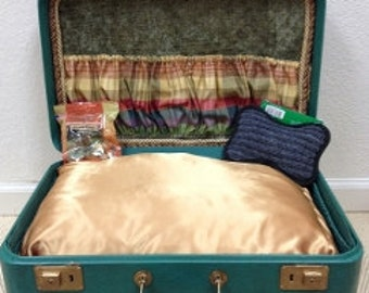 Custom Made Vintage Suitcase Pet Bed- Green