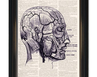 Dictionary art print Medical Anatomy. Head & Nerve Diagram Dictionary page print. Buy any 3 get 1 FREE! Vintage dictionary paper 8x10.5 size