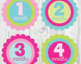 FREE GIFT Monthly Baby Stickers, Baby Girl Month Stickers, Baby Photo Props, Monthly Girl Stickers, Baby Shower Gift, Girly Decor