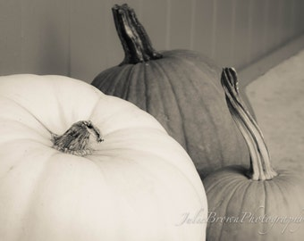 Black and White Pumpkin Photo, Fall Photo, Autumn Decor 8x10 print or canvas