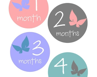 Milestone Stickers, Baby Month Stickers, , Monthly Baby Sticker, Baby Shower Gifts, Baby Month Sticker Girl, Butterfly, G05