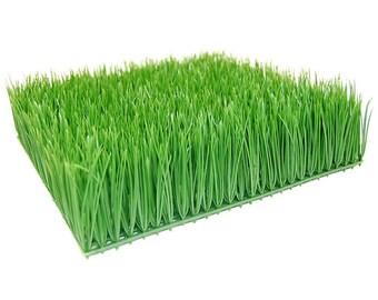 """Artificial Decorative Wheatgrass Square 6"""" x 6"""" (Green)"""