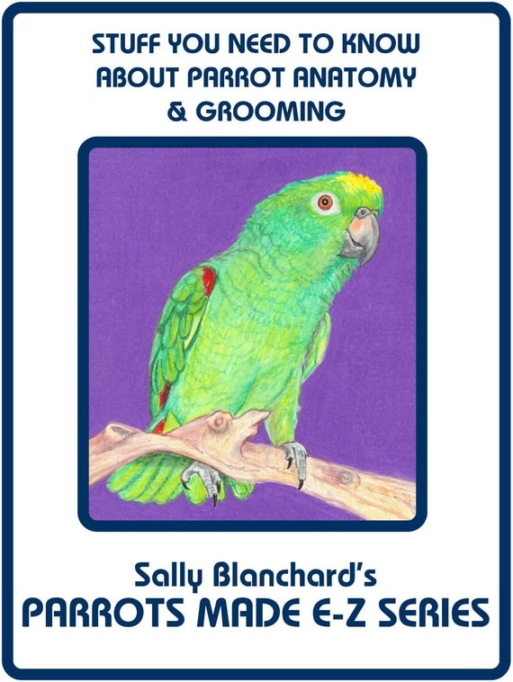 """Sally Blanchard's Parrots Made E-Z: Stuff you Need to Know about Anatomy, Grooming, and What Makes Your Parrot  'Tick"""""""