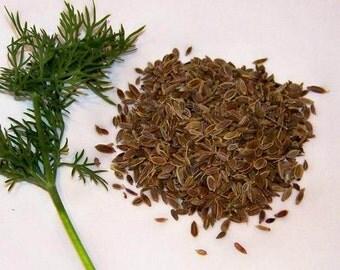 Organic Dill seeds 3gr 4000 - 4200 seeds