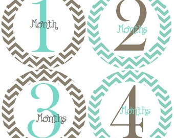 Month Stickers, Monthly Baby Stickers, Monthly Milestone Stickers, Monthly to Month Stickers #116