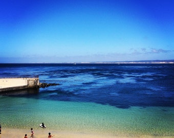 Kids Flocking in the Dreamy Blue Water of Monterey Bay,CA