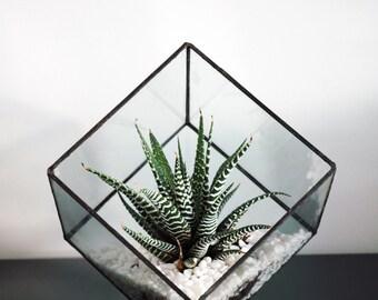 Geometric Glass Terrarium / Cube / Square / Handmade Glass Planter / Modern Planter / Stained Glass Terrarium / Terrarium
