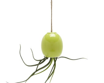 LAST ONES - SALE - small green hanging airplant pod planter (tm)