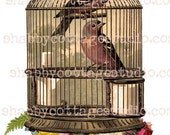 INSTANT DOWNLOAD DIGITAL Sheet Birdcage with Birds Florals DragonFly Wings Great for Iron on Transfer