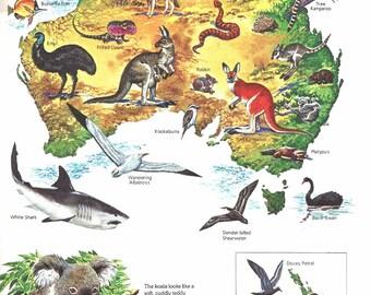 Map australian wild life print vintage children s book plate print