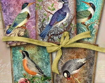 Printable Download EXOTIC BIRDS Gift Tags Digital Collage Sheet Vintage ephemera Paper Craft Jewelry Holders ArtCult downloadable graphics
