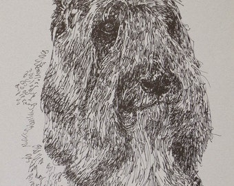 Bouvier des Flandres dog art portrait drawing from words. Your dog's name added into art FREE. Great gift. Signed Kline 11X17 Lithograph #29