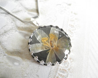 Star Of Bethlehem Blossom Atop Black Background Crown Pendant Beneath Glass-Gifts Under 30-Symbolizes Hope, Continued Happiness & Love