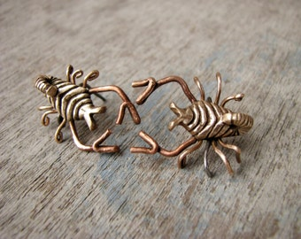 Scorpion earrings entomology jewelry