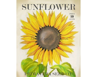 Sunflower Art  - Spring Art - Garden Art - Botanical Art Print - Spring Decor - Garden Decor - Sunflower Decor - Gardening - Sunflower - Art