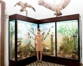 FINAL SALE  Brown safari dress, khaki uniform dress