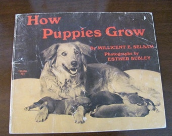 "Vintage ""How Puppies Grow"" Children's Story Book -  1971 - Educational - Scholastic Book Services"
