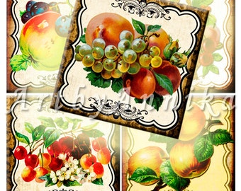 Digital Collage of Fruit Vintage - 20 2x2 Inch JPG images - Digital Collage Sheet