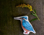 Common Kingfisher Animal Pillow Toy. Hand painted organic cotton Montessori toy by Aly Parrot on Etsy.