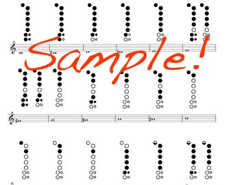 Mini Recorder Fingering Chart  Double Sided Laminated Chart!