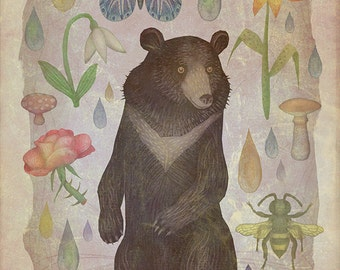 Asian black bear - A4 art print