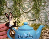 Boston Terrier Teapot, Needle Felted Boston Terrier, Handmade Boston Terrier