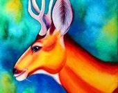 Mule Deer Buck Painting 8x10 Print 11x14 Print  Deer Art Print Deer Illustration Watercolor Deer Decor Stag Painting Woodland Creature