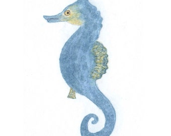 Seahorse Gift Cards -  Sea green and blue Seahorse cards - Set of 4