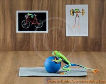 Pilates, Yoga, REAL Frog Photo, Workout, Gym,  Workout Art Print