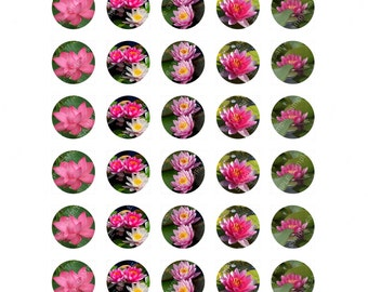 "Beautiful Lotus Flowers 1"" Round Images / Circles Digital Collage Sheet"