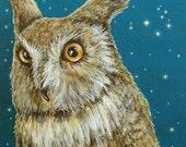 Great Horned Owl Starry Night Sky Portrait fine art giclee print