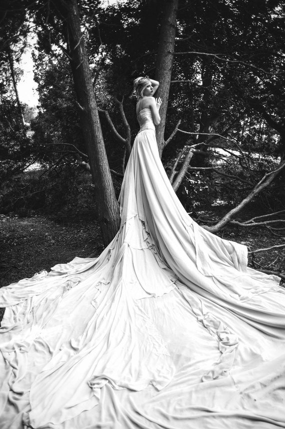Long wedding dress with very long puddle train romantic for Very sexy wedding dresses