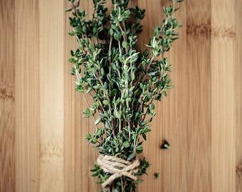 Kitchen home decor, Food art print, Garden photography // Culinary Herbs No. 1 - Thyme
