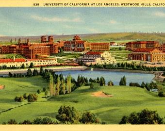 University of California at Los Angeles Westwood Hills Vintage Postcard 1948