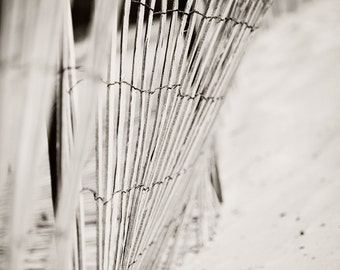 Ocean, Pacific Ocean, fence, Beach, Sand, California, Summer, Landscape, Black and White, Photographic Print, Kristine Cramer Photography