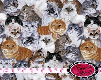 KITTY CAT Fabric by the Yard Half Yard or Fat Quarter CATS Fabric Pet Fabric Cats Allover Apparel 100% Cotton Quilting Fabric t3-26