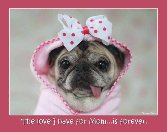 5x7 Mother's Day Card The Love I Have for Mom Pug Card by Pugs and Kisses